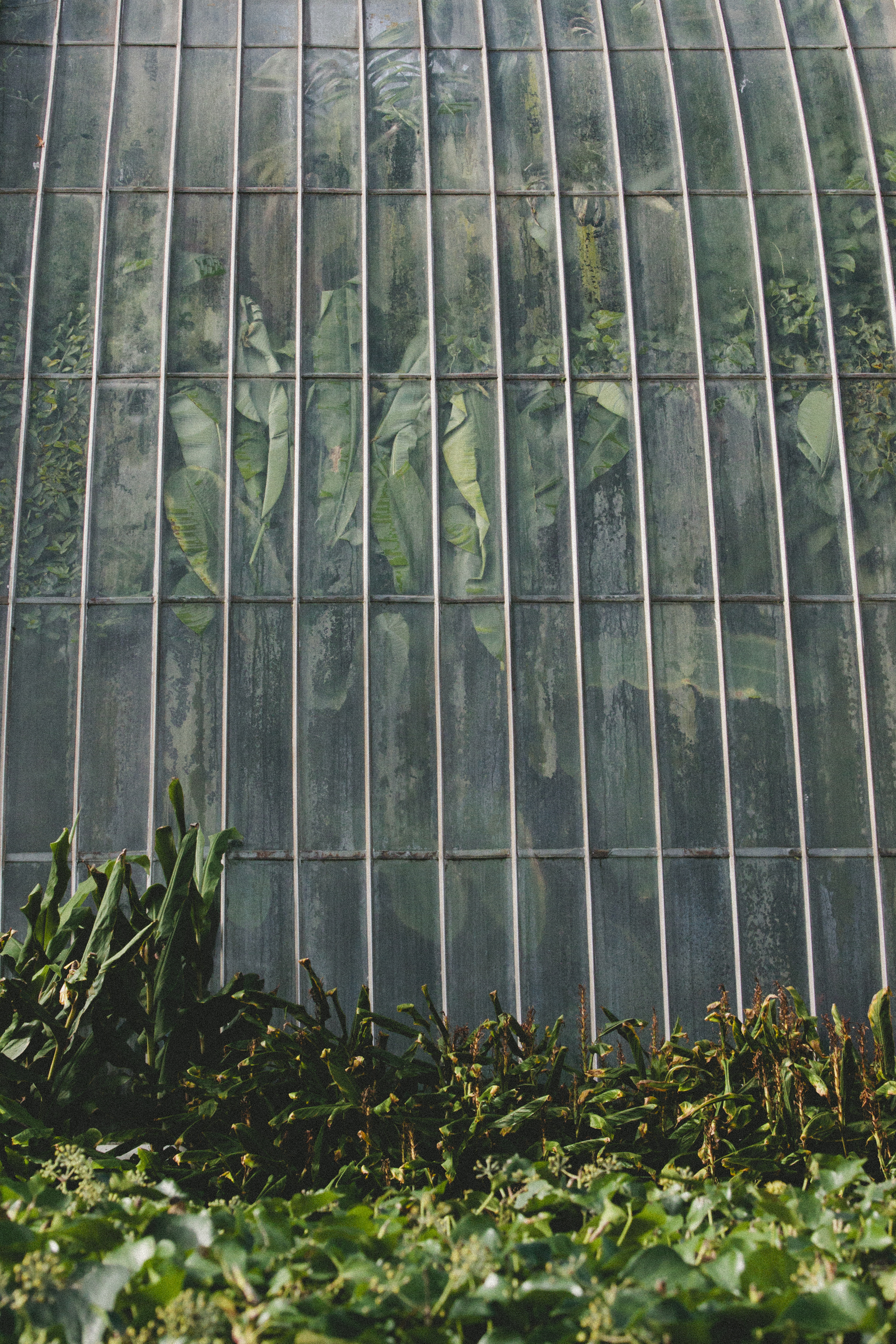 catholic singles in kew gardens Tickets for kew gardens & palace: priority entrance a breath of fresh air in one of the world's largest botanical gardens  kew gardens also has two different art galleries - the marianne.